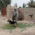 DSC00307 Makripodis with MWD & Infantry on Patrol 4-2010