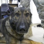 MWD Dak feeling the the  drugs kick in before his operation