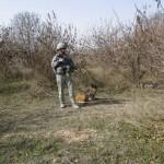 SSgt Jones & MWD Joice near thickets