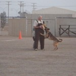 handler & MWD training