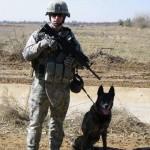 handler & WMD on patrol 2